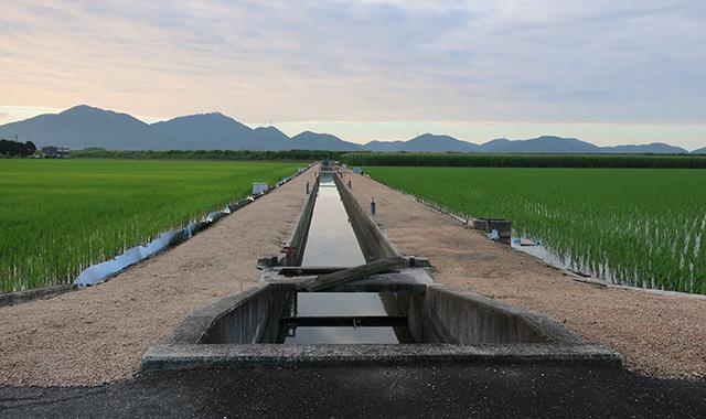 岡山市南区地内かんがい排水事業